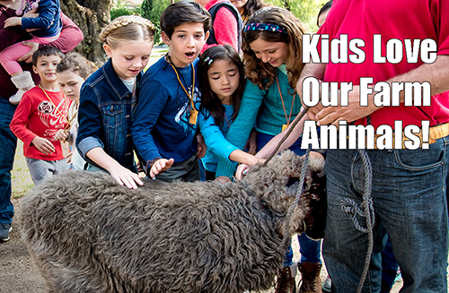Kids Love Our Farm Animals